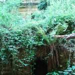 Bracciano (RM), Vicarello, particolare cunicolo di epoca romana