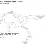fontanazzi_pianta