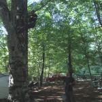 Campo Estivo 2012 - Preparazione campo (foto N. Damiano)