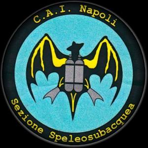 Logo CAI NAPOLI